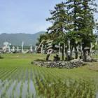 木島平村大塚沖の田園風景(田植え後)