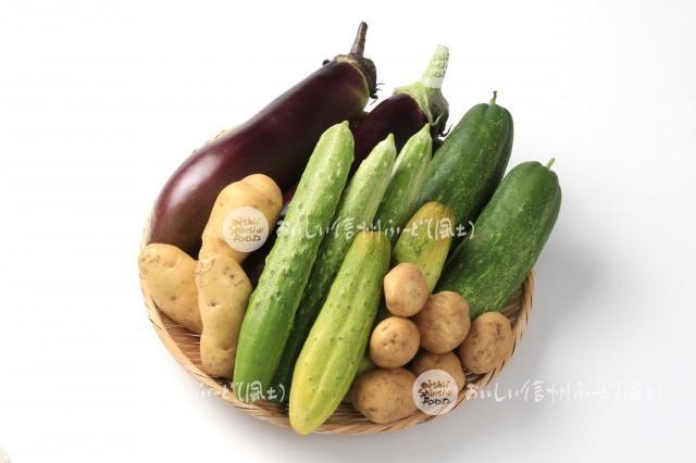 伝統野菜7種(スタジオ盛り合わせ・ていざなす、鈴ヶ沢なす、鈴ヶ沢うり、中根うり、清内路きゅうり、清内路黄いも、下栗芋)