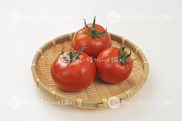 加工用トマト【リコボール】(スタジオ入れ物)