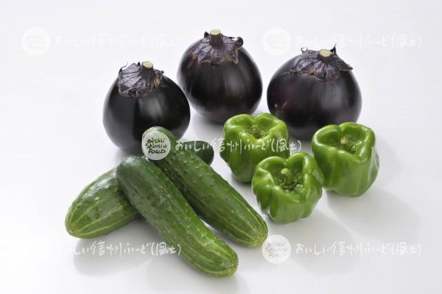 伝統野菜3種(スタジオ盛り合わせ・小布施丸なす、八町きゅうり、ぼたごしょう)