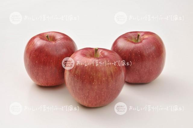 りんご【シナノスイート】(スタジオ複数)