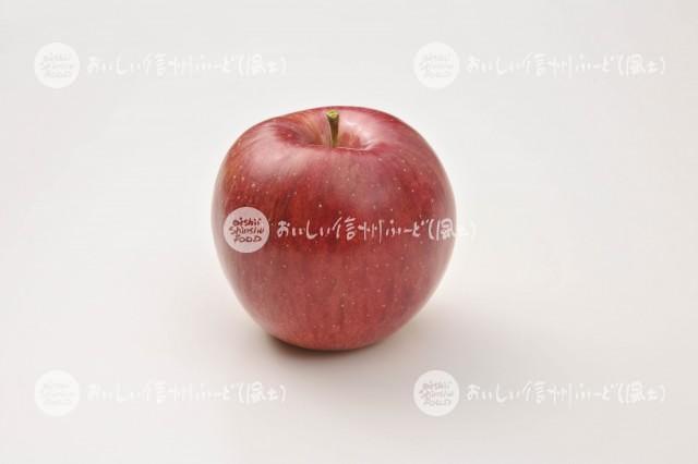 りんご【シナノスイート】(スタジオ単体)