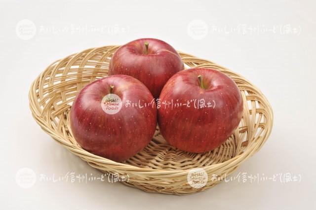 りんご【シナノスイート】(スタジオ入れ物)