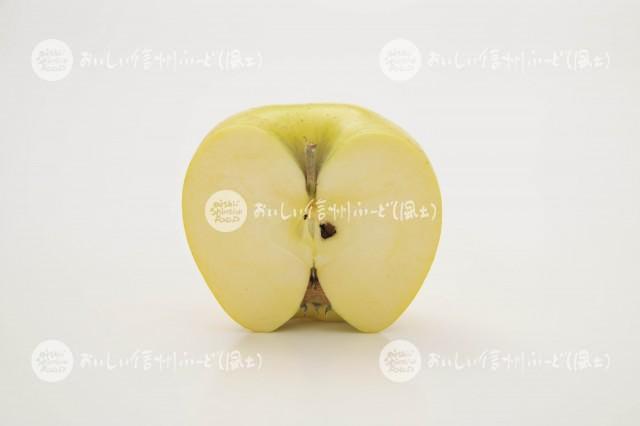 りんご【シナノゴールド】(スタジオ切り口)