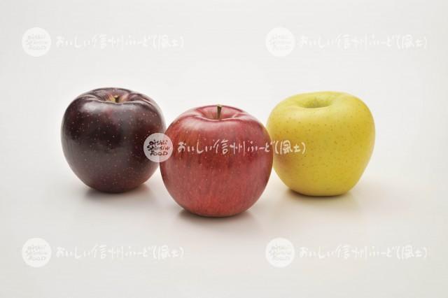 りんご【シナノスイート、秋映、シナノゴールド】(スタジオ)