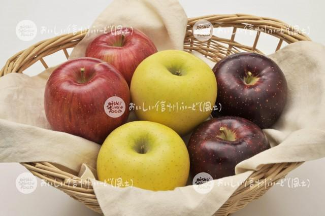 りんご【シナノスイート、秋映、シナノゴールド】(スタジオ入れ物)