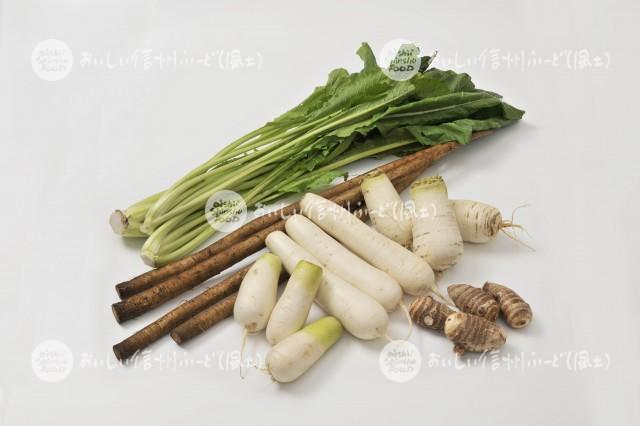 伝統野菜5種(スタジオ盛り合わせ・野沢菜、常盤牛蒡、坂井芋、前坂大根、灰原辛味大根)