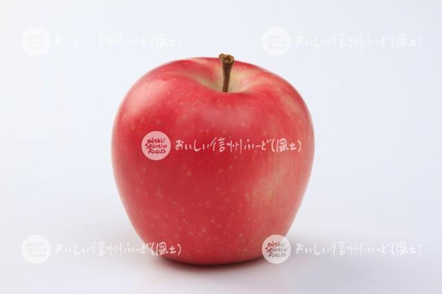 りんご【シナノピッコロ】(スタジオ単体)