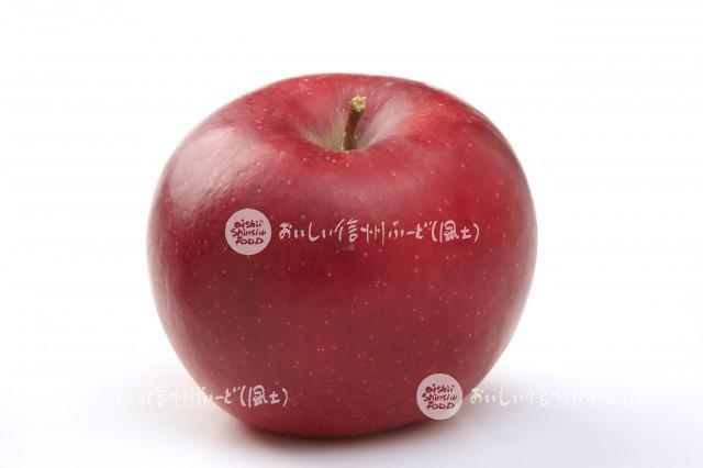 りんご【シナノプッチ】(スタジオ単体)