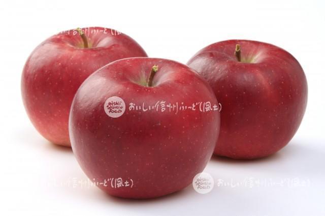 りんご【シナノプッチ】(スタジオ複数)