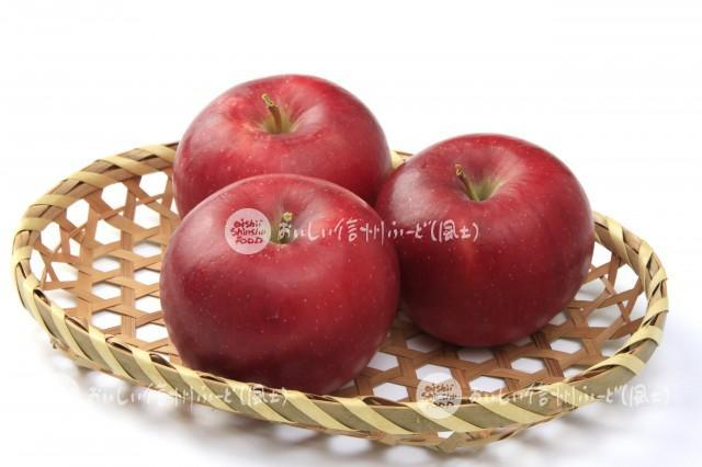 りんご【シナノプッチ】(スタジオ入れ物)