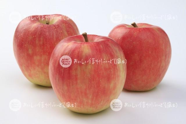 りんご【シナノドルチェ】(スタジオ複数)
