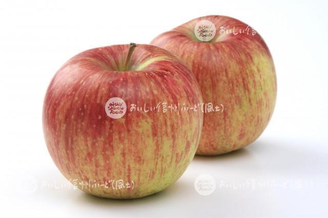 りんご【つがる】(スタジオ複数)