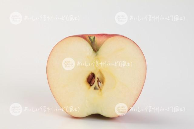 りんご【シナノピッコロ】(スタジオ切り口)