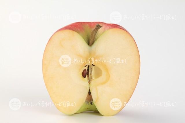 りんご【シナノドルチェ】(スタジオ切り口)