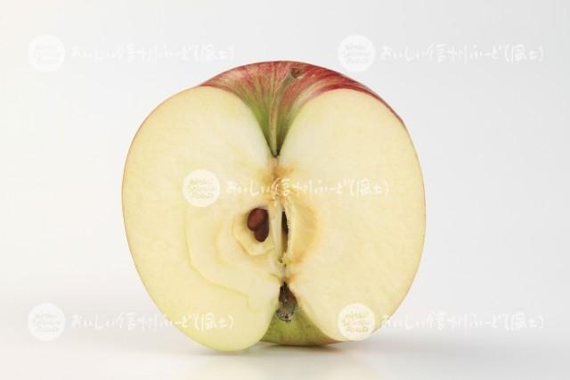 りんご【つがる】(スタジオ切り口)