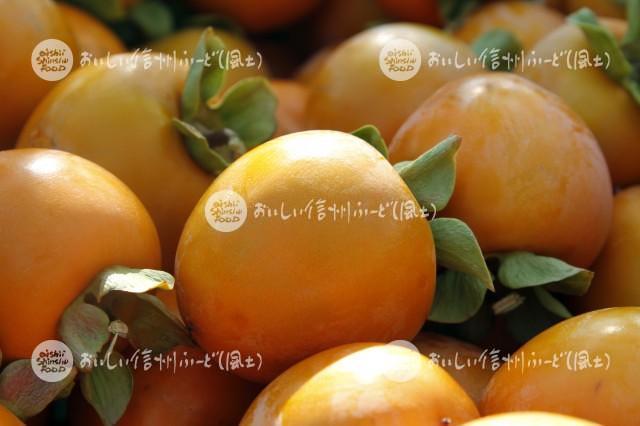干柿【市田柿】(圃場)