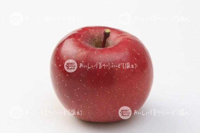 りんご【ふじ】(スタジオ単体)