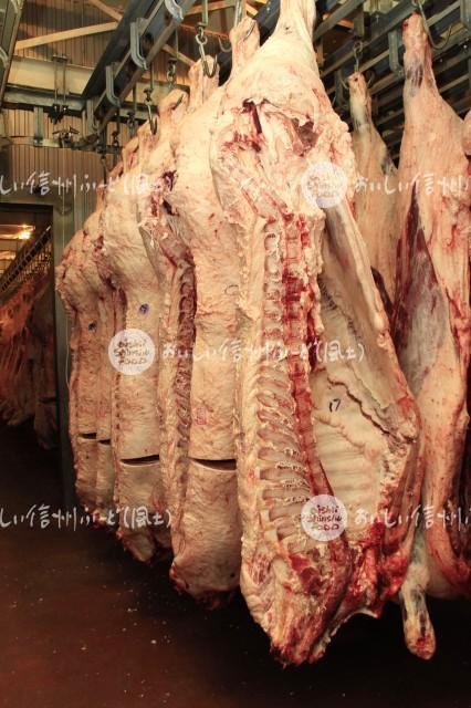 信州プレミアム牛肉(枝肉)