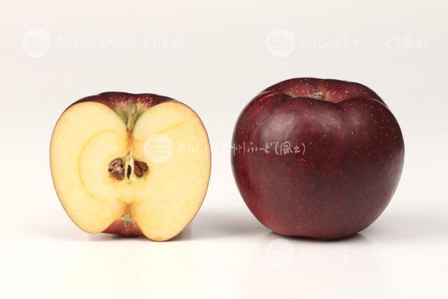 りんご「秋映」(スタジオ断面と全体)