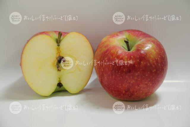 りんご【シナノリップ】(スタジオ断面と全体)