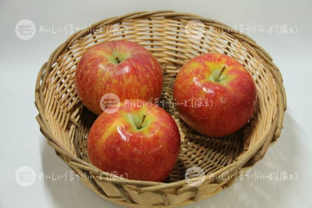 りんご【シナノリップ】(スタジオ入れ物)