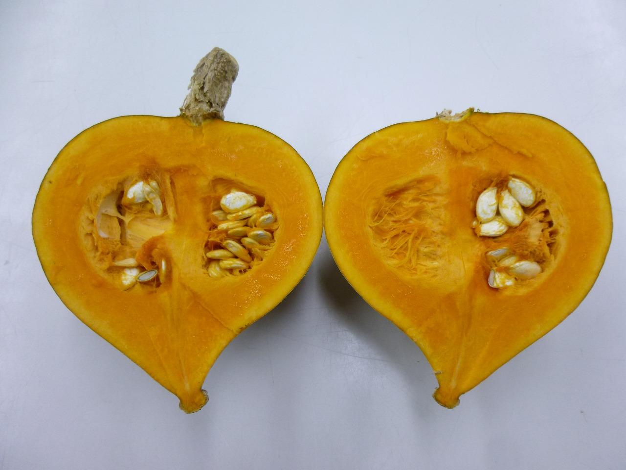 清内路かぼちゃ