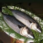 飯田市伊豆木の鯖鮨