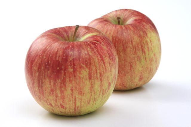 色は淡いが甘みは濃い!りんご「つがる」の出荷が始まりました!