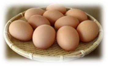 小布施町の自然卵「おぶせのたまご」