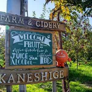 日本のリンゴだからできる。目指すのは「ジャパニーズ・サイダー」
