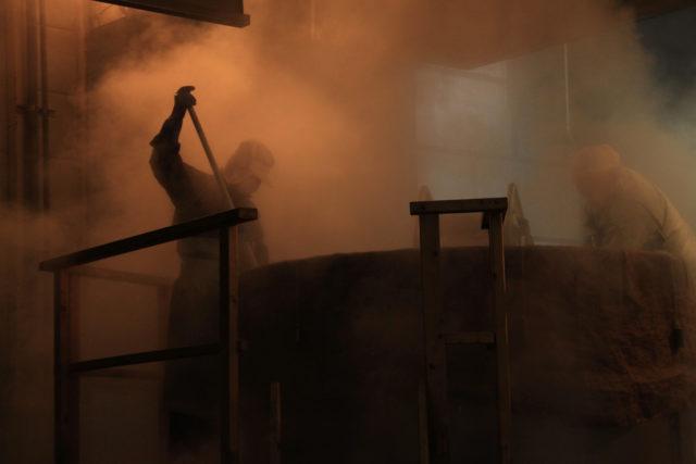 「発酵・長寿」ポータルサイトがオープンしました!